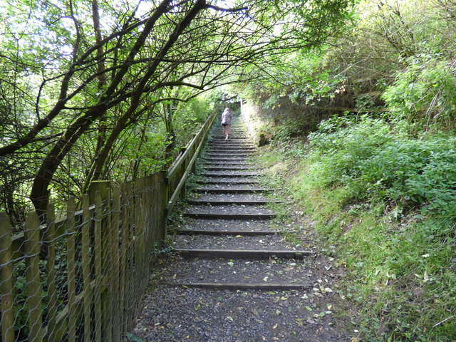 Embsay:  Steps up to Millholme Rise