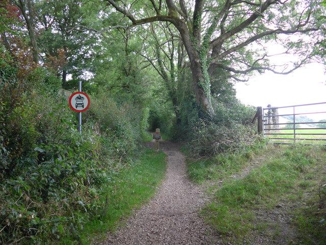 South Downs Way, Exton to Buriton (116)