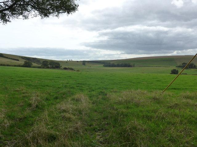 South Downs Way, Exton to Buriton (117)