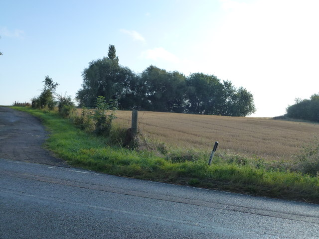Stubble and trees near Fenton Manor Farm