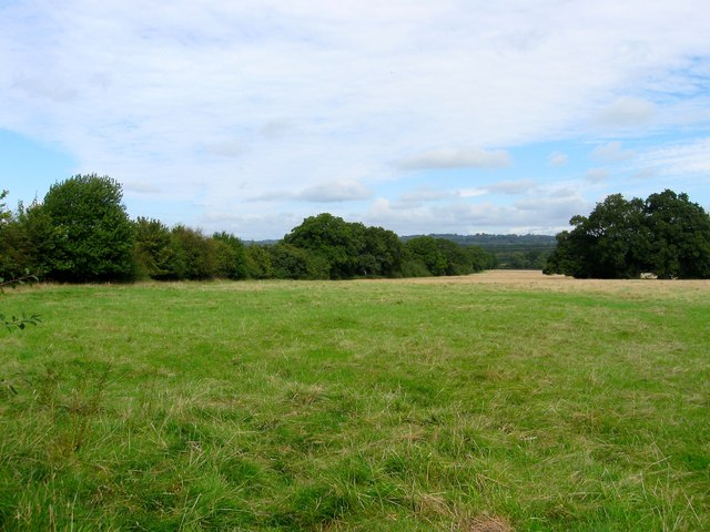 Seven Acres/Upper Cleared Field