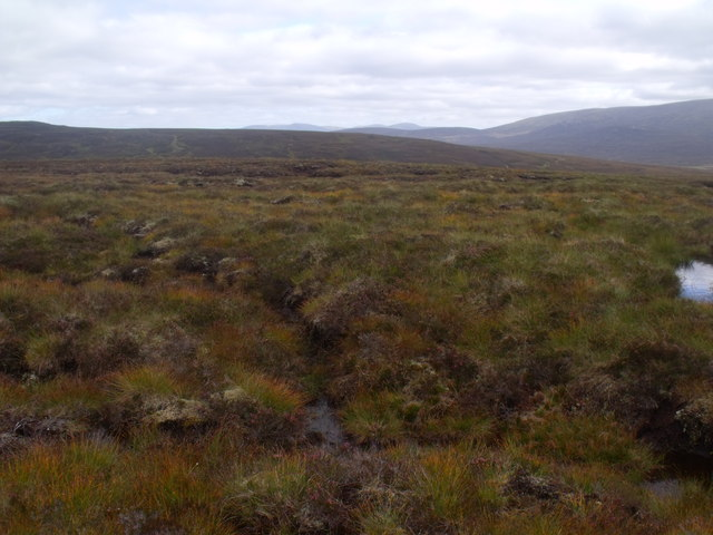 Boggy land west of Caochan  Ban in the Eidart system, Glenfeshie