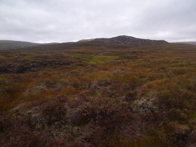 Patch of grazing in drainage of Allt Eindart near Glenfeshie