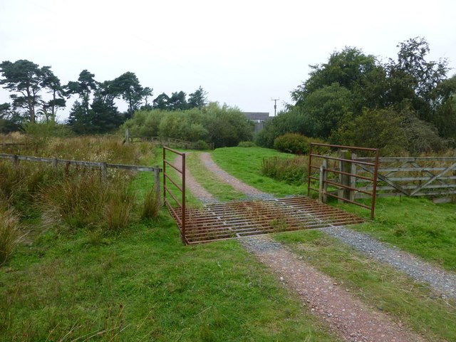 Cattle grid on track to Horsley High Barns