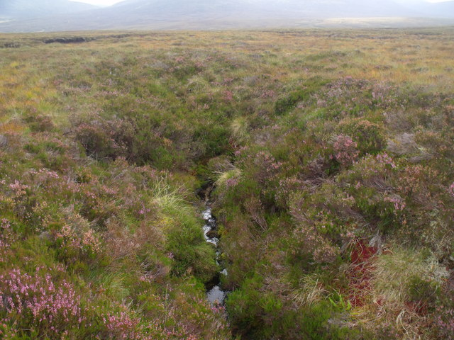 Spring immediately subsumed by peatland in the Allt Eindart drainage system