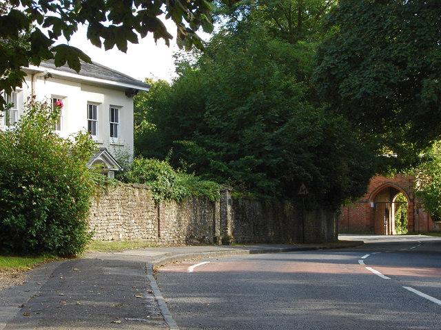 The Street, Wonersh