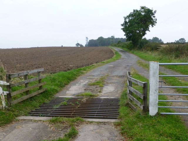 Cattle grid and track to Hebron Hill