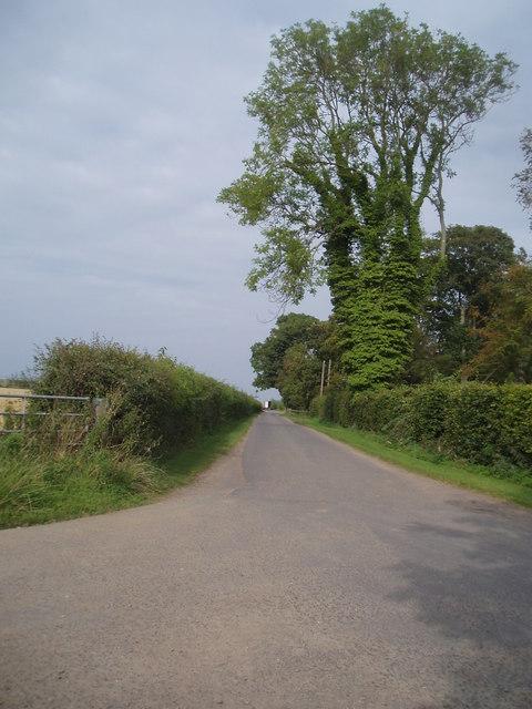 Farm road to East Scryne