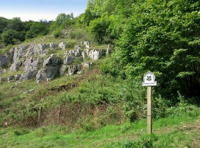 National Trust, Cheddar Gorge