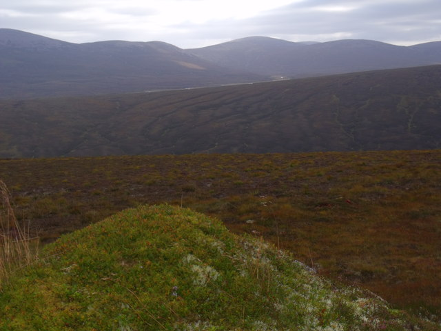 View one of a strange vegetated knoll above River Feshie near Aviemore
