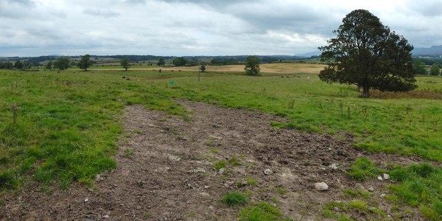 Field near Upper Gartness