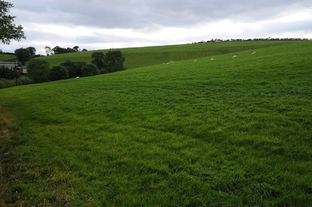 Farmland above Coed Dolau