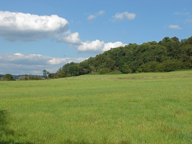 Fields near Great Tangley Manor