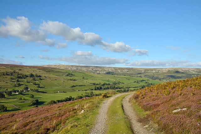 Slope with estate road on southern side of Swaledale