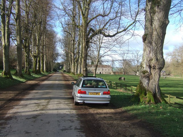 Main drive to Forde Abbey, Dorset