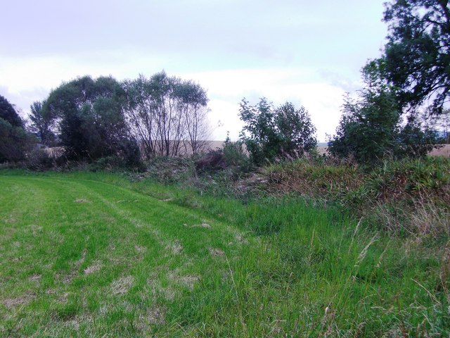 Field by Beltie Burn, Torphins