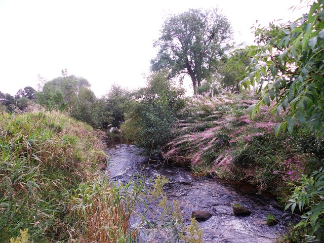 The banks of the Beltie Burn in August