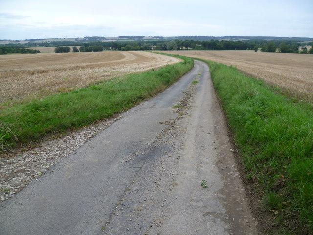 Pivington Lane