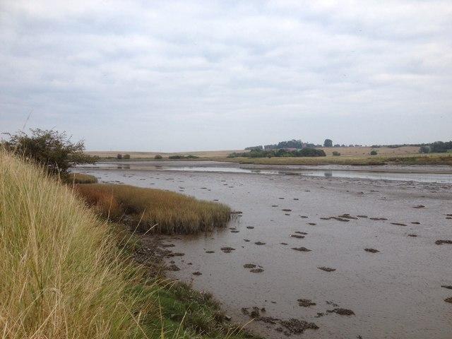 River Eden at low tide