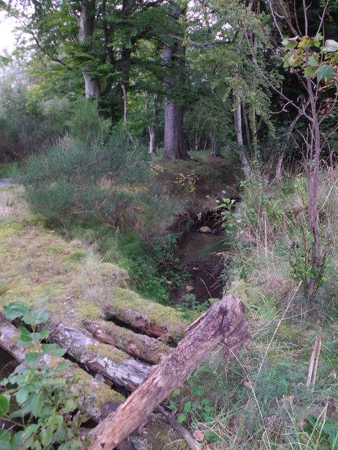 Upstream Gownie Burn