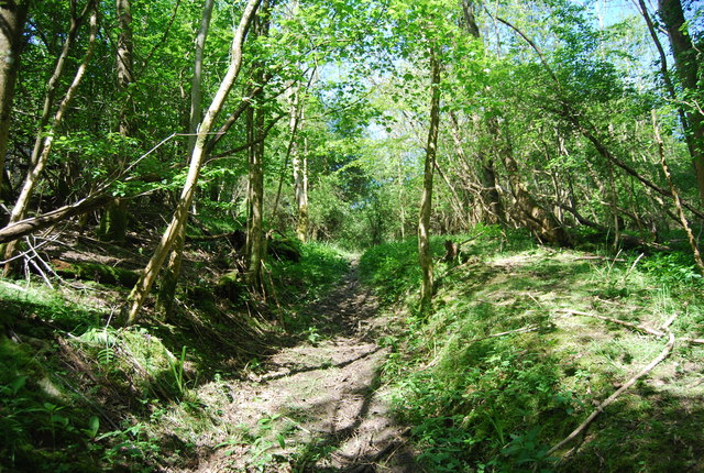 Footpath, Timber Gill