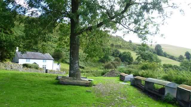 Brynorgan on Offa's Dyke Path