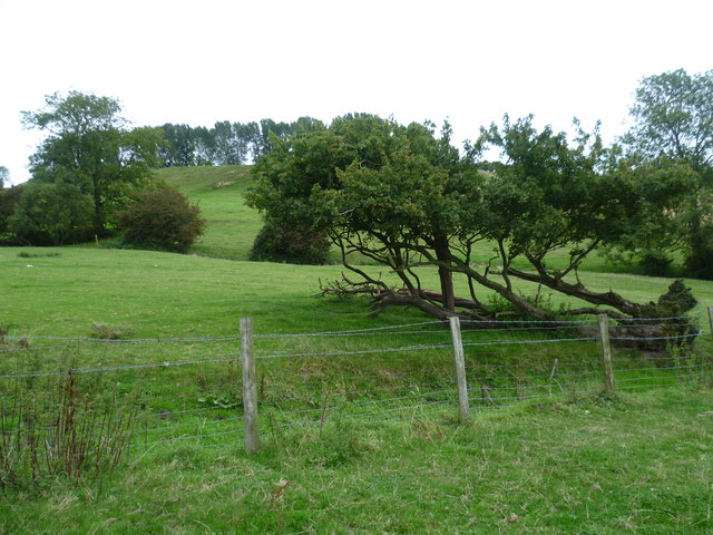 The Cliffe from the Greensand Way