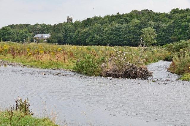 Bowmont Water near Kirk Yetholm