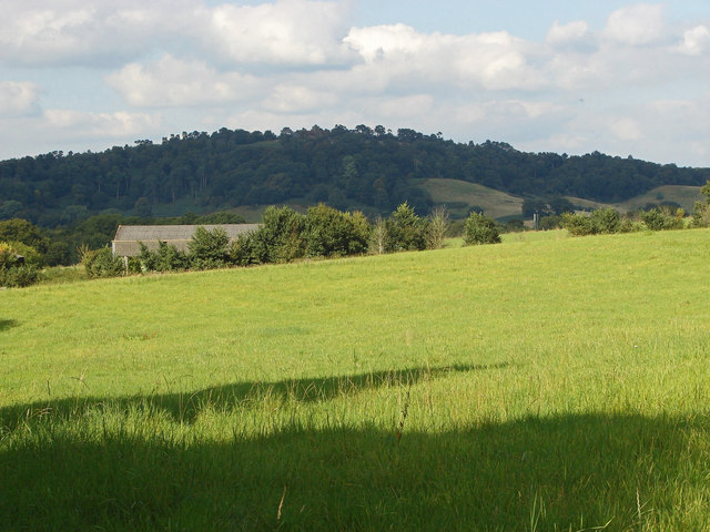 Fields near Great Tangley Manor