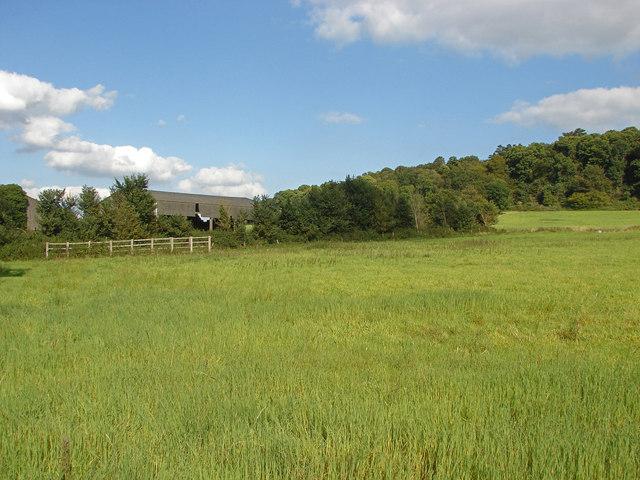 Tangley farm