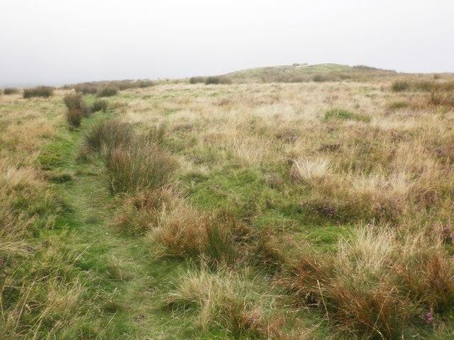 Path to Chapman Barrows