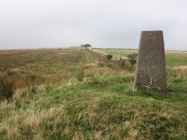 Trig Point on Chapman Barrows