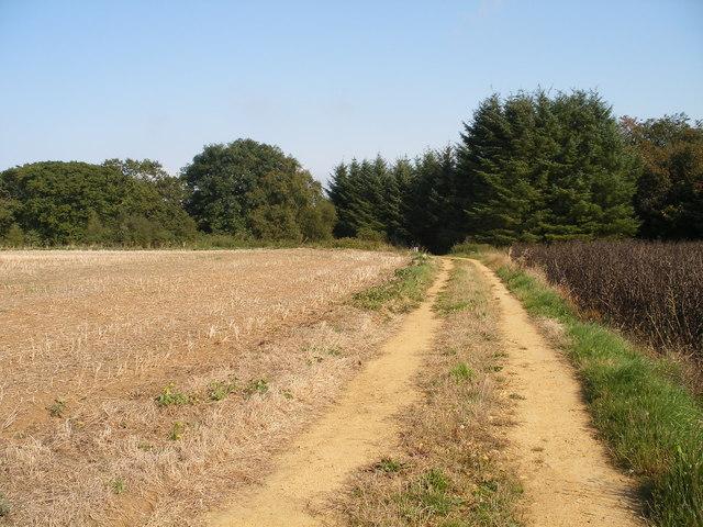 Track towards Kimlin Slack