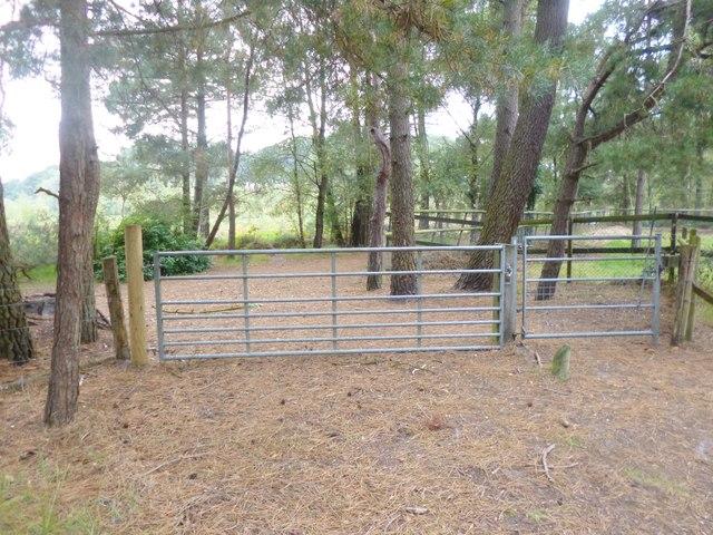 Avon Heath, gates