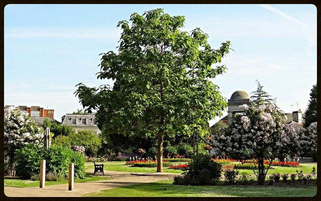 Vivary Park , Taunton