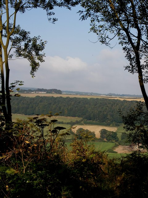 View from Cockrah Wood