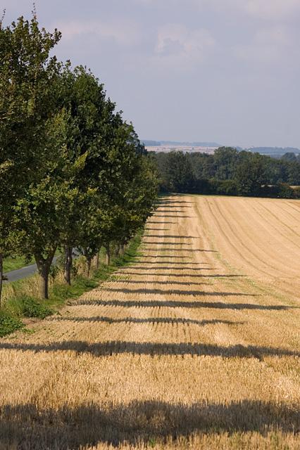 Arable field, west of Bainton, E Yorks
