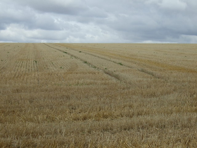 Stubble field, Boynton Field