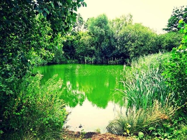 Lake Next to M5