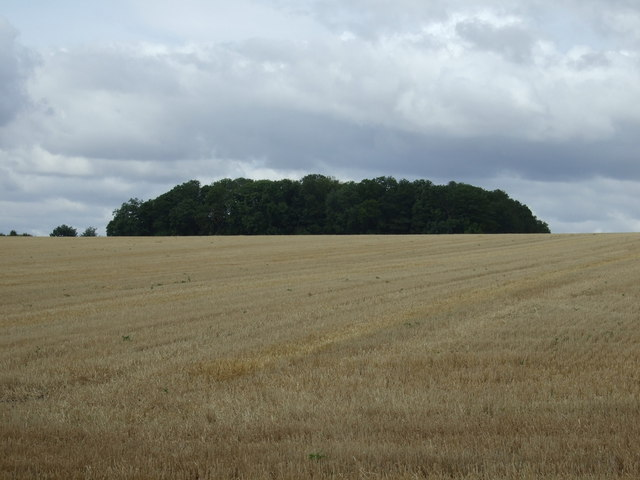 Farmland towards Binsdale Farm