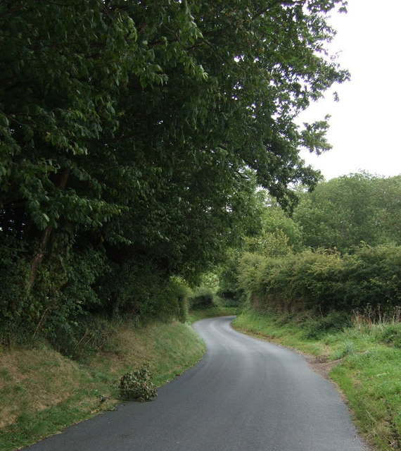 Winding road beside North Wood