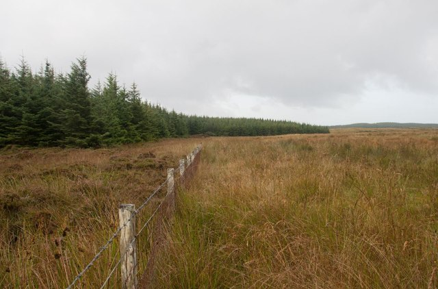 Fence, moorland and forestry near Ballimony, Islay