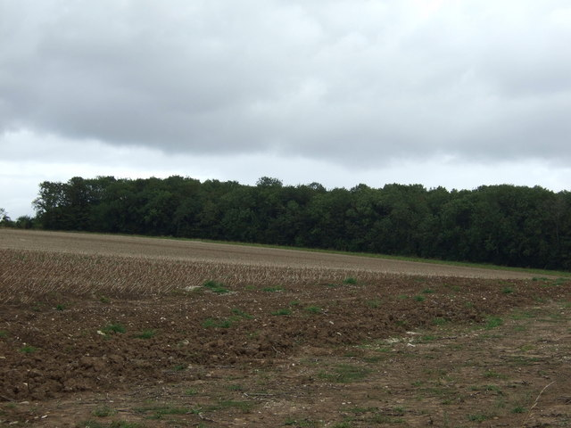 Farmland towards Cottage Pasture Wood