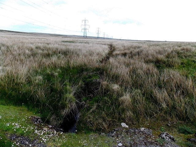 Moorland brook north of Garnlydan