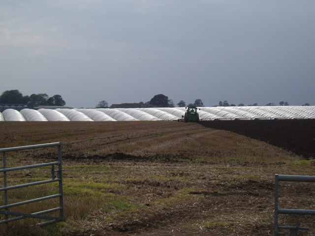 Polytunnels and Ploughing