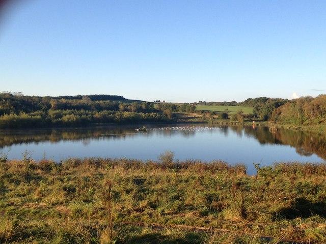 Bateswood Lake