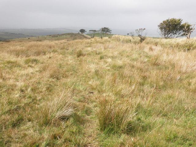 Boundary on Chapman Barrows
