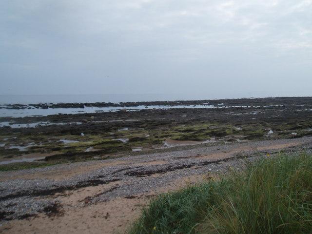 Rocky shoreline near Easthaven