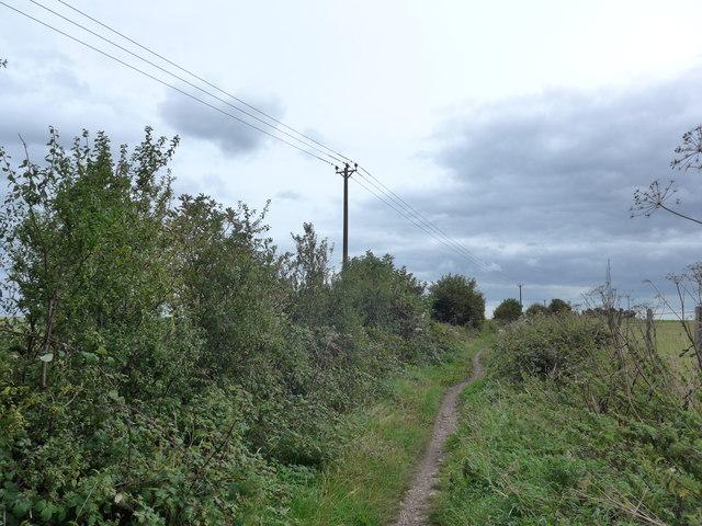 South Downs Way, Exton to Buriton (127)