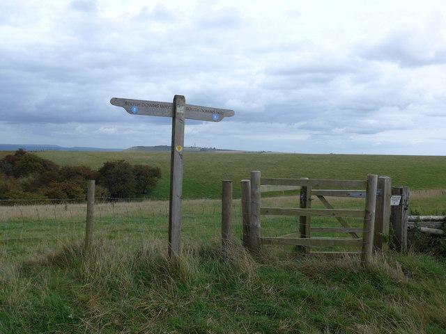 South Downs Way, Exton to Buriton (130)